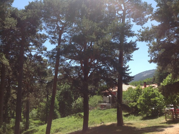 Cercedilla by Naked Madrid